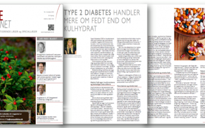 Type 2 diabetes handler mere om fedt end om kulhydrat
