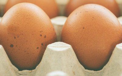 Kan vi roligt spise flere æg?