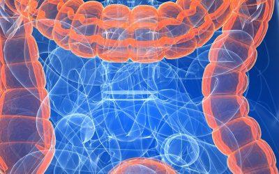 Morbus crohn & Colitis ulcerosa