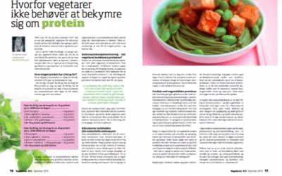 Protein og vegetarkost
