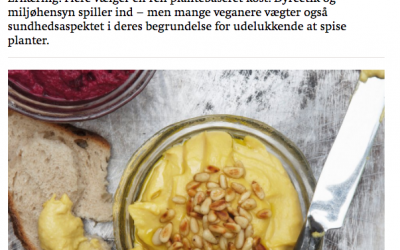 Interview – Kost & Ernæringsforbundet
