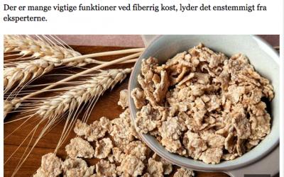 Interview – Jyllandsposten
