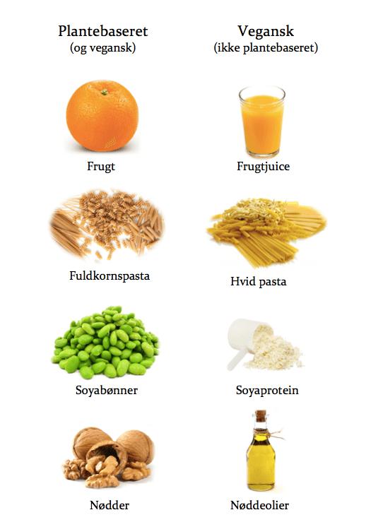 hvad er kost